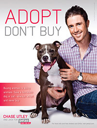 Adopt, Don't Buy -Chase Utley