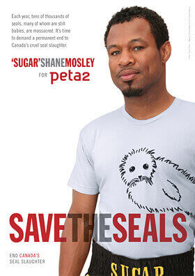'Sugar' Shane Mosley's 'Save the Seals' Ad for peta2