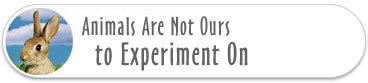 Animals Are Not Ours to Experiment On