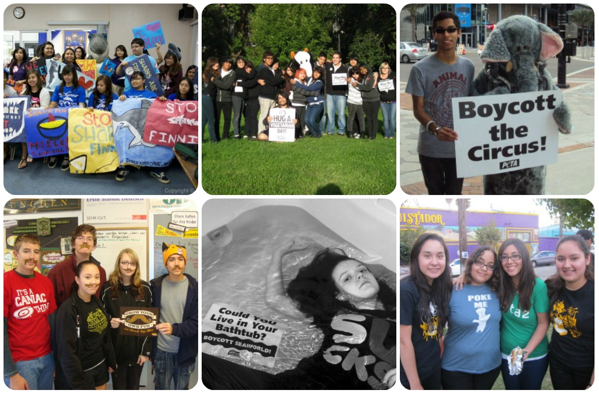 peta2 youth advisory board