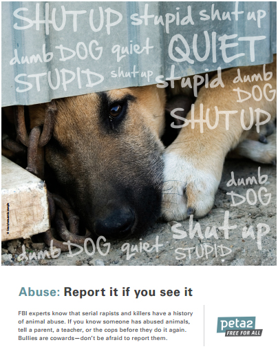 Dog and cat bullying and abuse poster