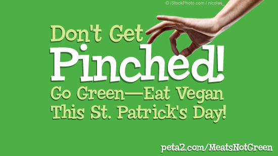 Don't get pinched this St. Patrick's Day
