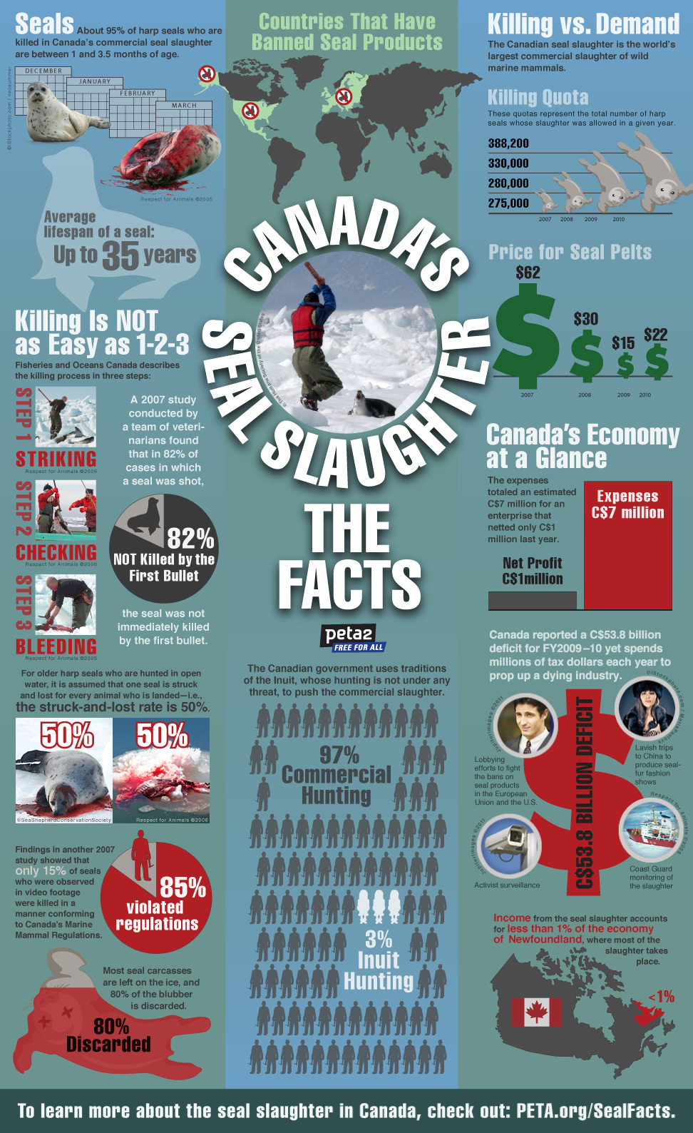 peta2 seal slaughter infographic