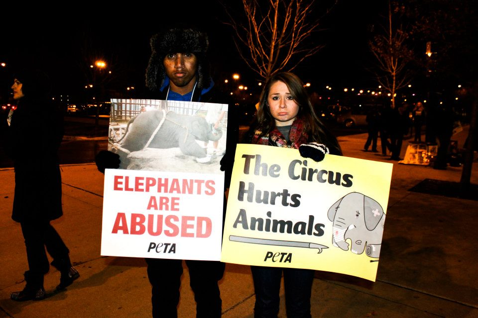 Friends protesting Ringling Bros.