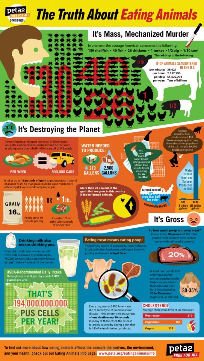 Image of: Memes Peta2 Infographic Eating Animals The Facts Peta2 Eating Animals The Facts Peta2