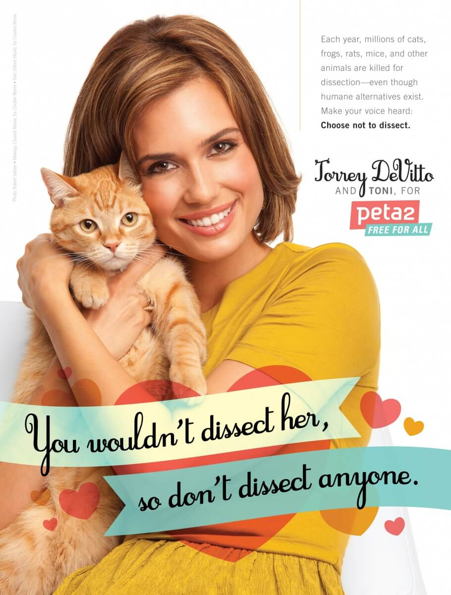 Torrey DeVitto Anti-Dissection Ad Large