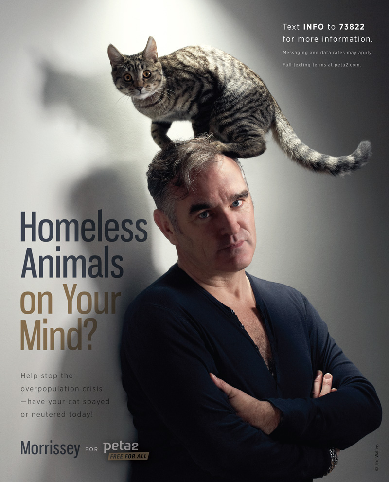 Morrissey's Spay and Neuter Ad