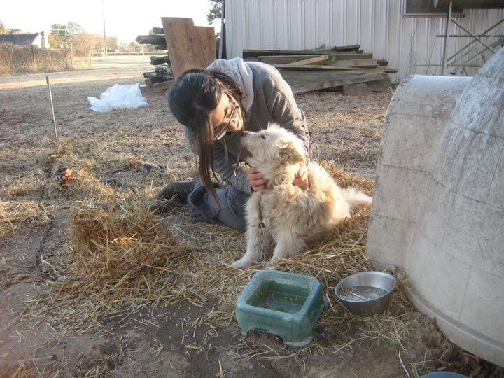 Rachelle delivering straw with PETA's Community Animal Project