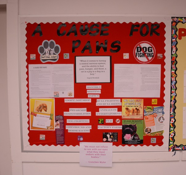 Cause for Paws bulletin board