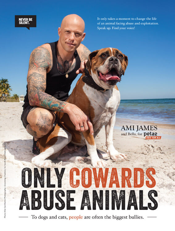 ami james only cowards peta2 psa