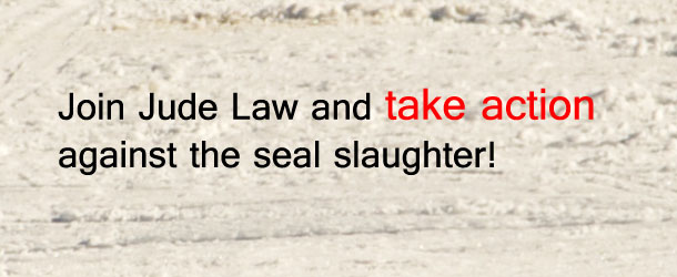 seal-slaughter-jude-law-button-2