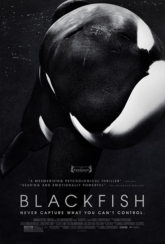 Blackfish the movie