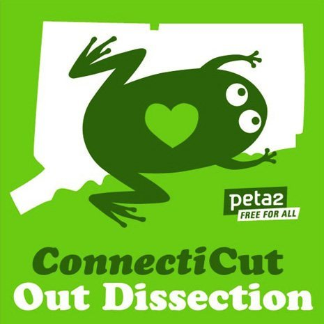 Connecticut cuts out dissection.