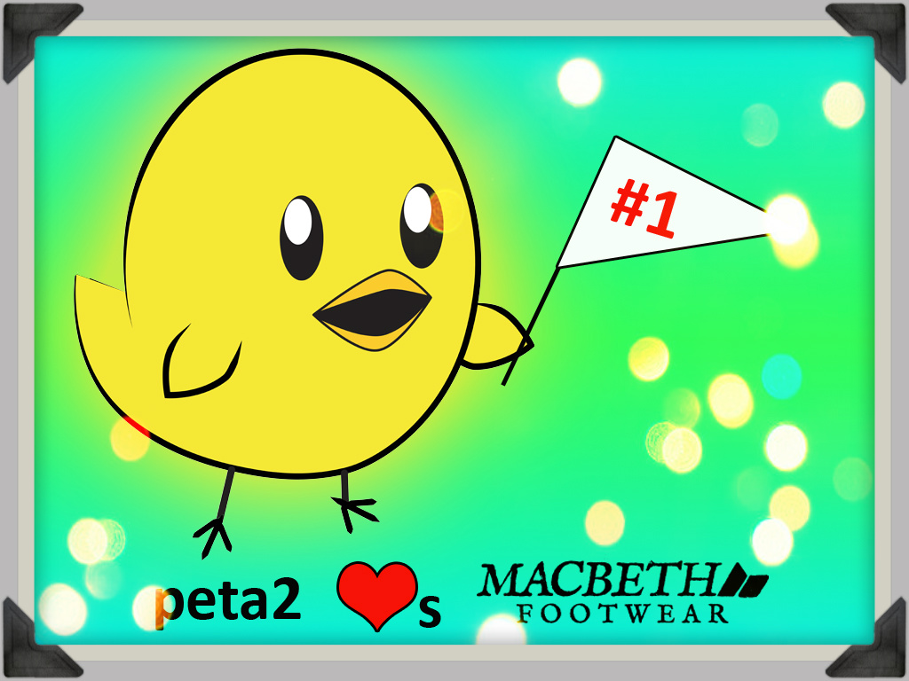 peta2-nugget-macbeth-tfs-blog