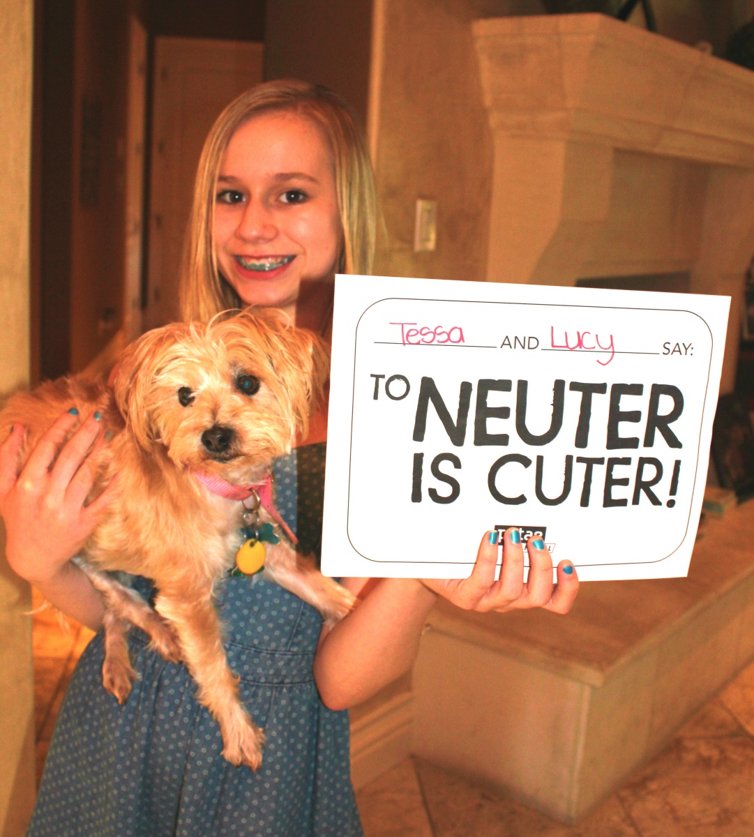 street team spay and neuter mission