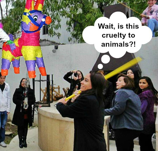 people for the ethical treatment of pinatas