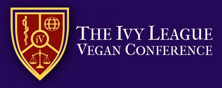 iV Conference