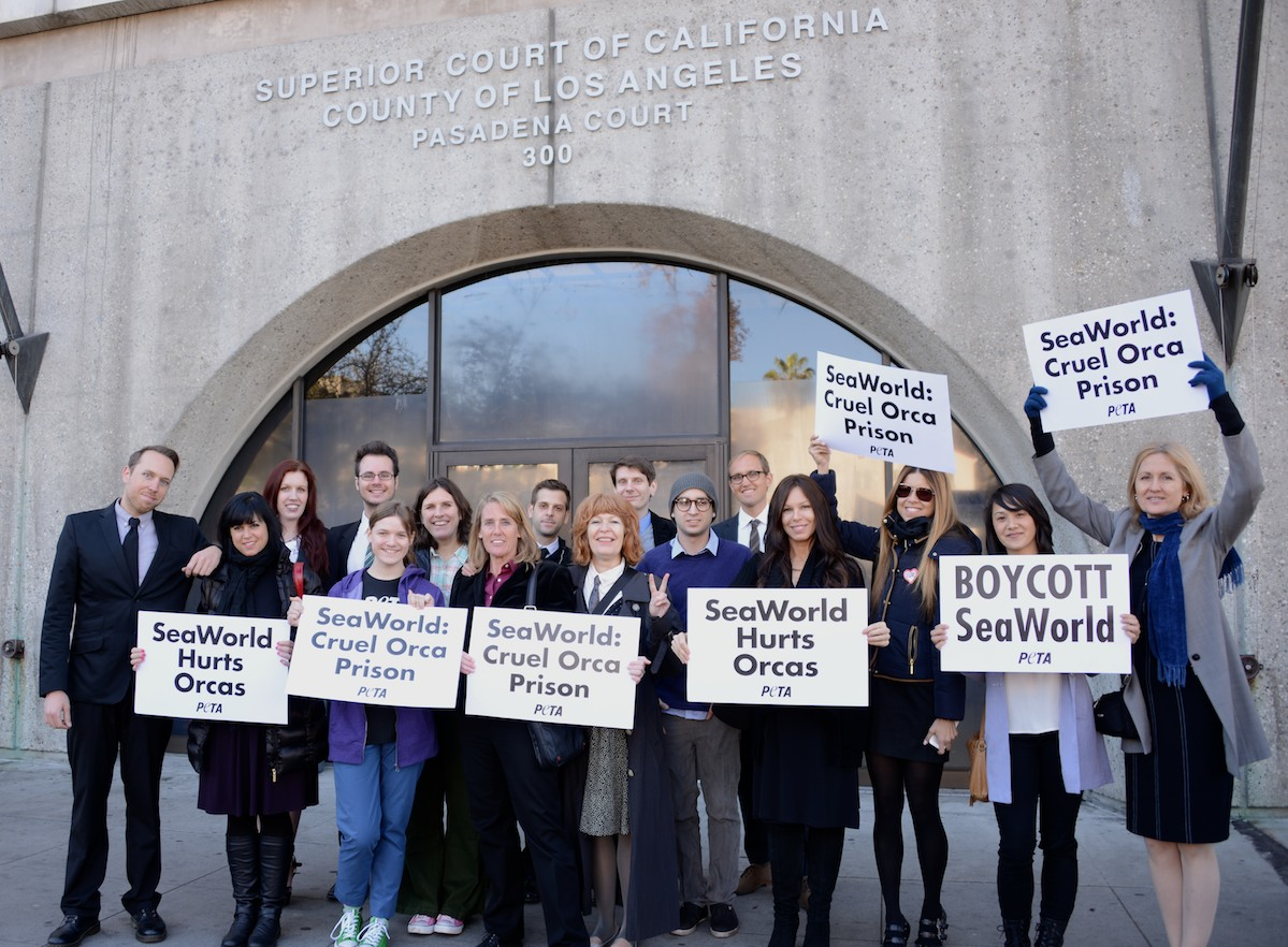 Rose McCoy and the 15 other activists arrested for blocking SeaWorld's float at the 2014 Rose Parade in Pasadena.