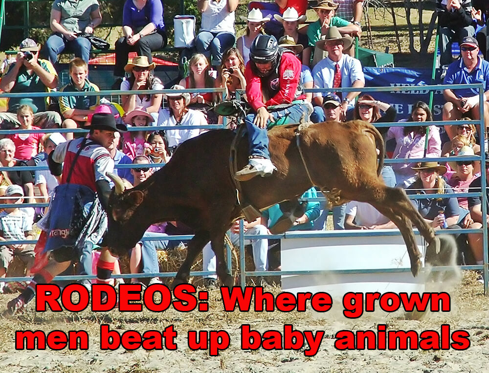 rodeo image share