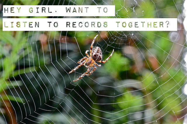 spider web with text