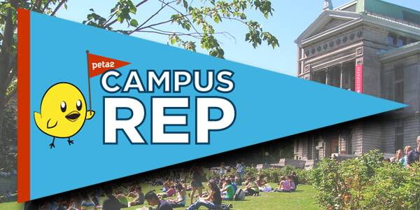 campus rep logo with college backdrop