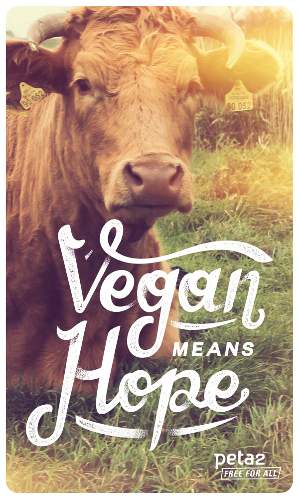 vegan is hope wallpaper