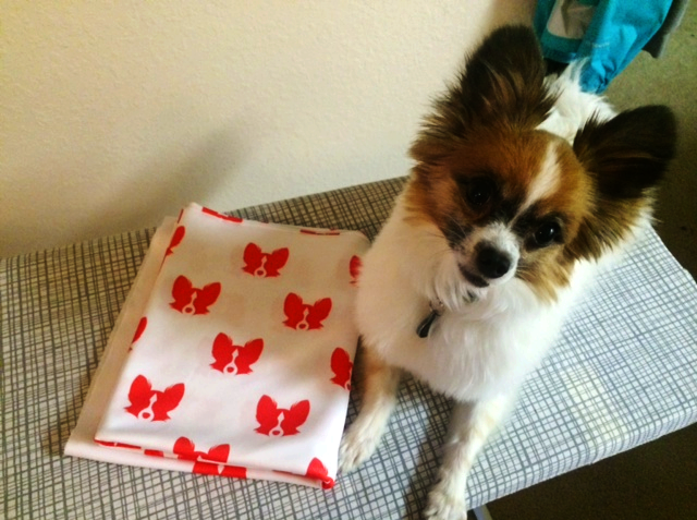 Make a dress featuring your doggy's face!