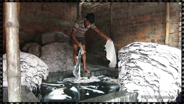 Leather-Tannery