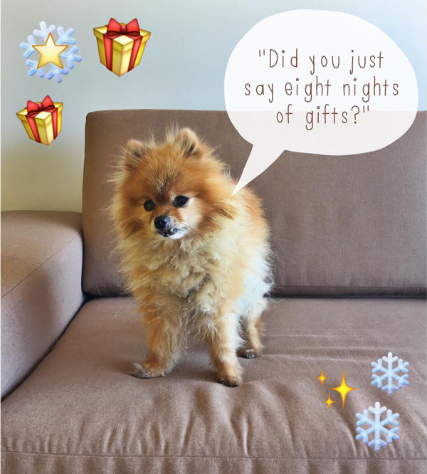 dog thinking of gifts