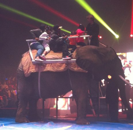 SFW Universoul Circus Elephant Rides