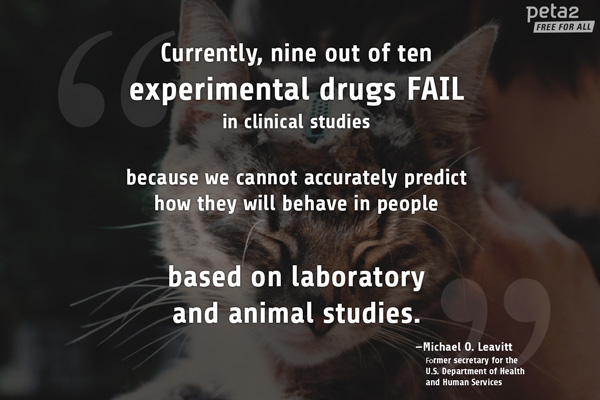 Experts Explain Why Animal Testing Is Bad Science Peta2