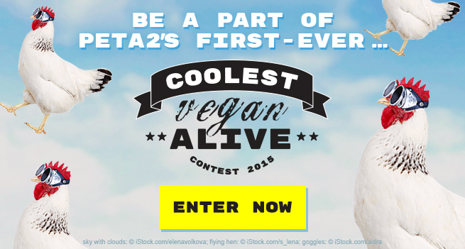 Be a part of peta2's first-ever … Coolest Vegan Alive contest