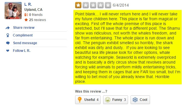 yelp review 8 all of it yes