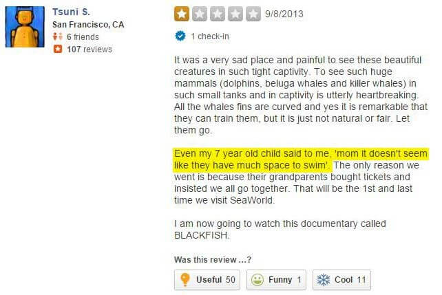 yelp-review-new-2