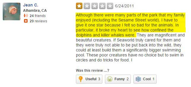 yelp-review-new