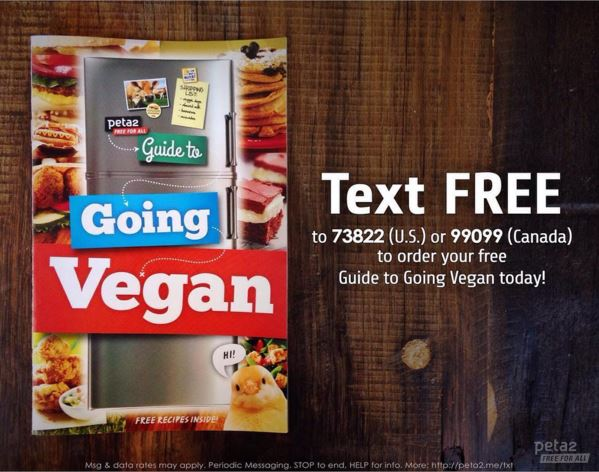 Text guide to going vegan