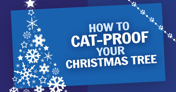 How To Cat Proof Your Christmas Tree.How To Cat Proof Your Christmas Tree Peta2