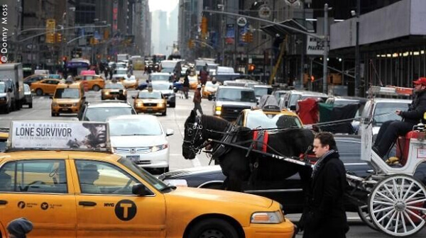 Horse-Carriage-Traffic