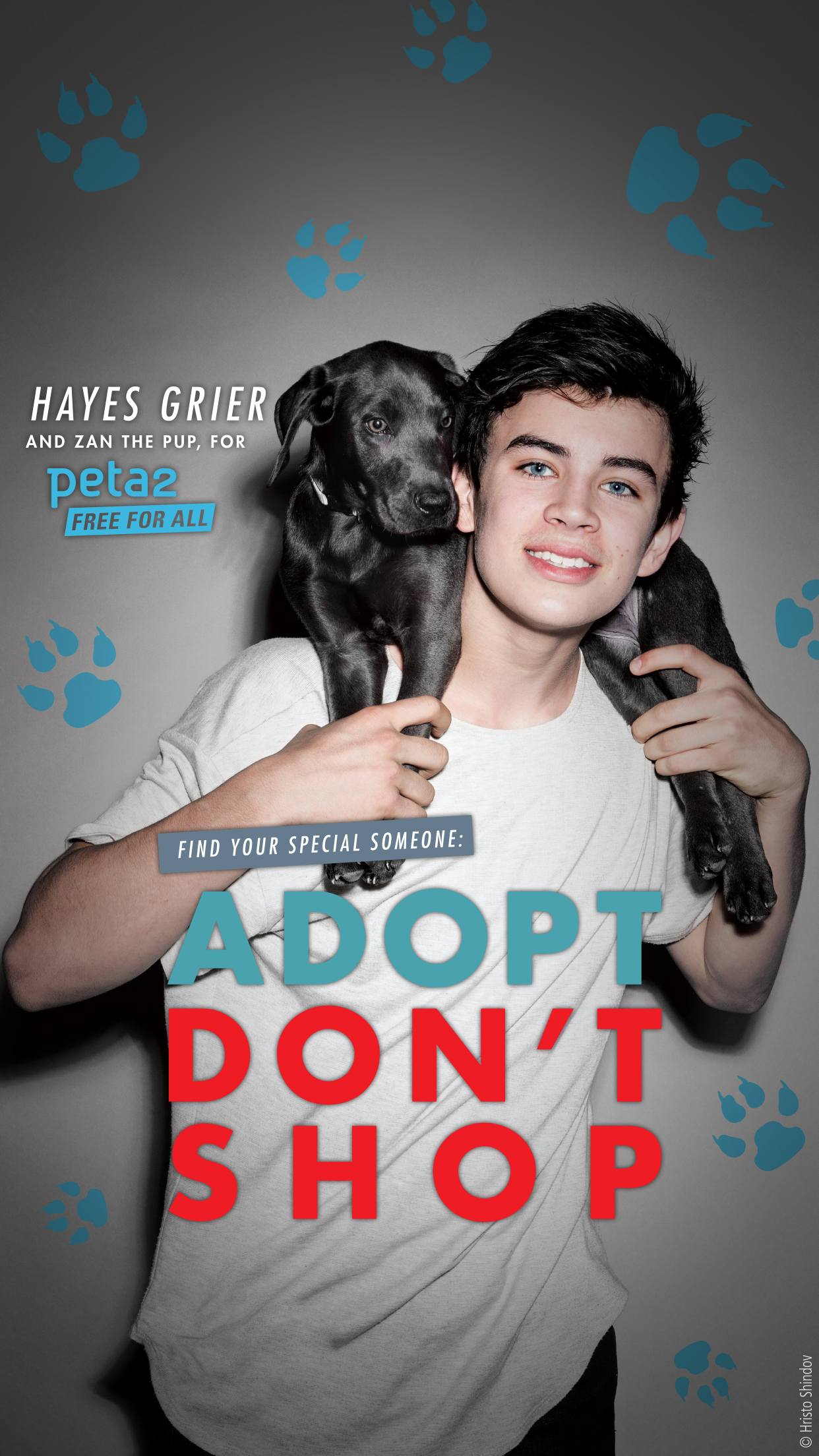 peta2-iphone-background-hayes-grier-adopt