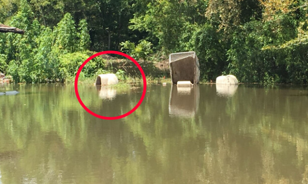 baton rouge dog houses in water
