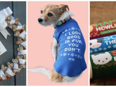 12 Perfect Gifts for People Who Care About Animals