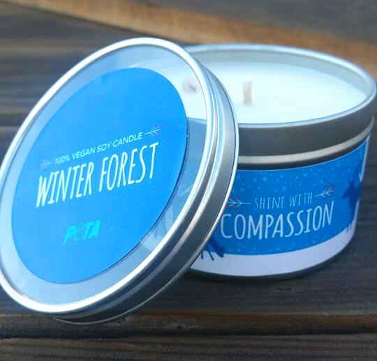 shine with compassion soy candle