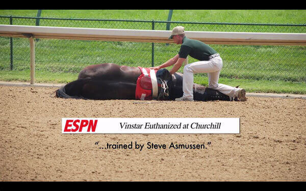 Horse Racing Investigation Euthanize