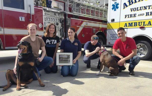 Abingdon Volunteer Fire & Rescue team saves dogs, firefighters save dogs