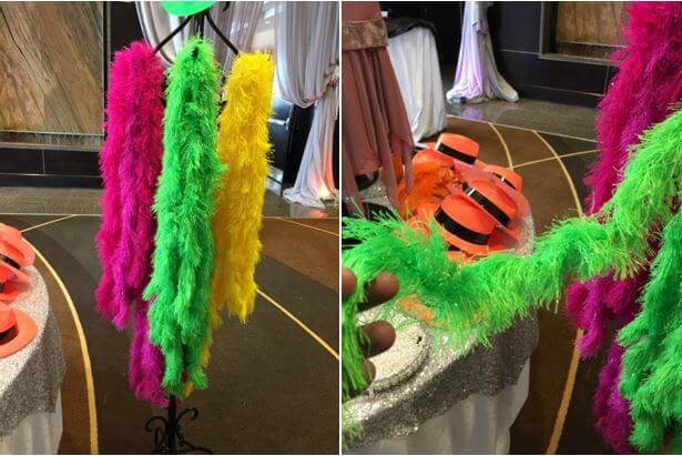 why you should never buy feathers, vegan boa, feather alternative boa