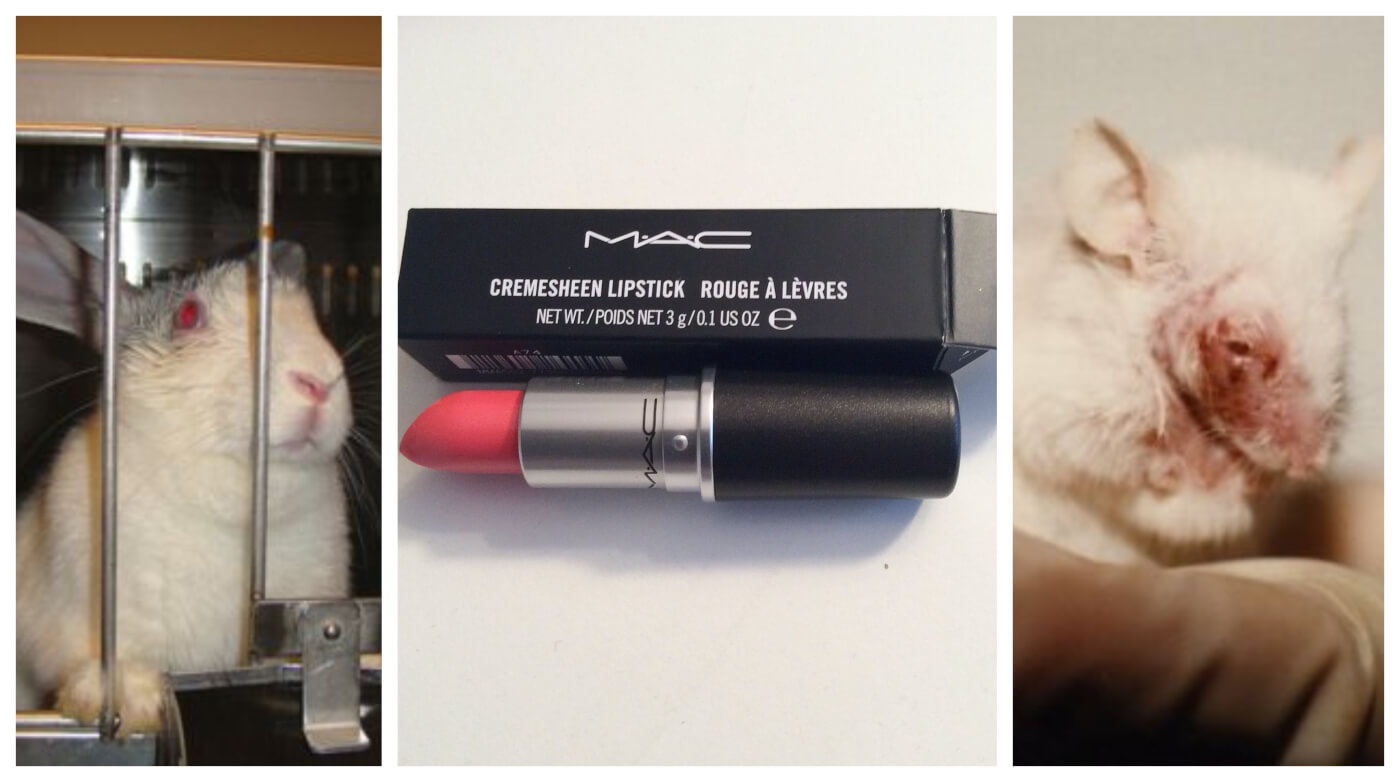 MAC Cosmetics Is Still Paying for Tests on Animals