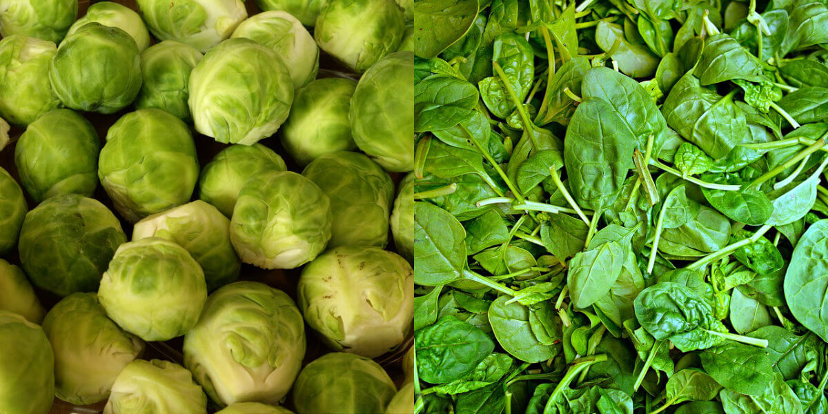 brussels sprouts and spinach side by side